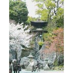 源氏物語千年紀で華やかな石山寺