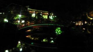 満月なので神泉苑に寄ってみた