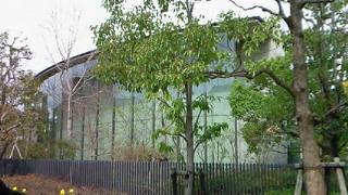 司馬遼太郎記念館・菜の花色の街角