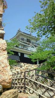 家康公が青壮年期を過ごした浜松城