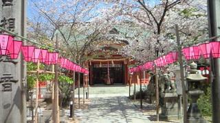 今日は葉桜おとみ・岩崎弥太郎縁の大阪西長堀土佐稲荷
