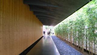 新緑が美しい根津美術館