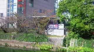 京都画壇の精華と上村松園の作品が市美術館と近代美術館でいっぺんに見られました