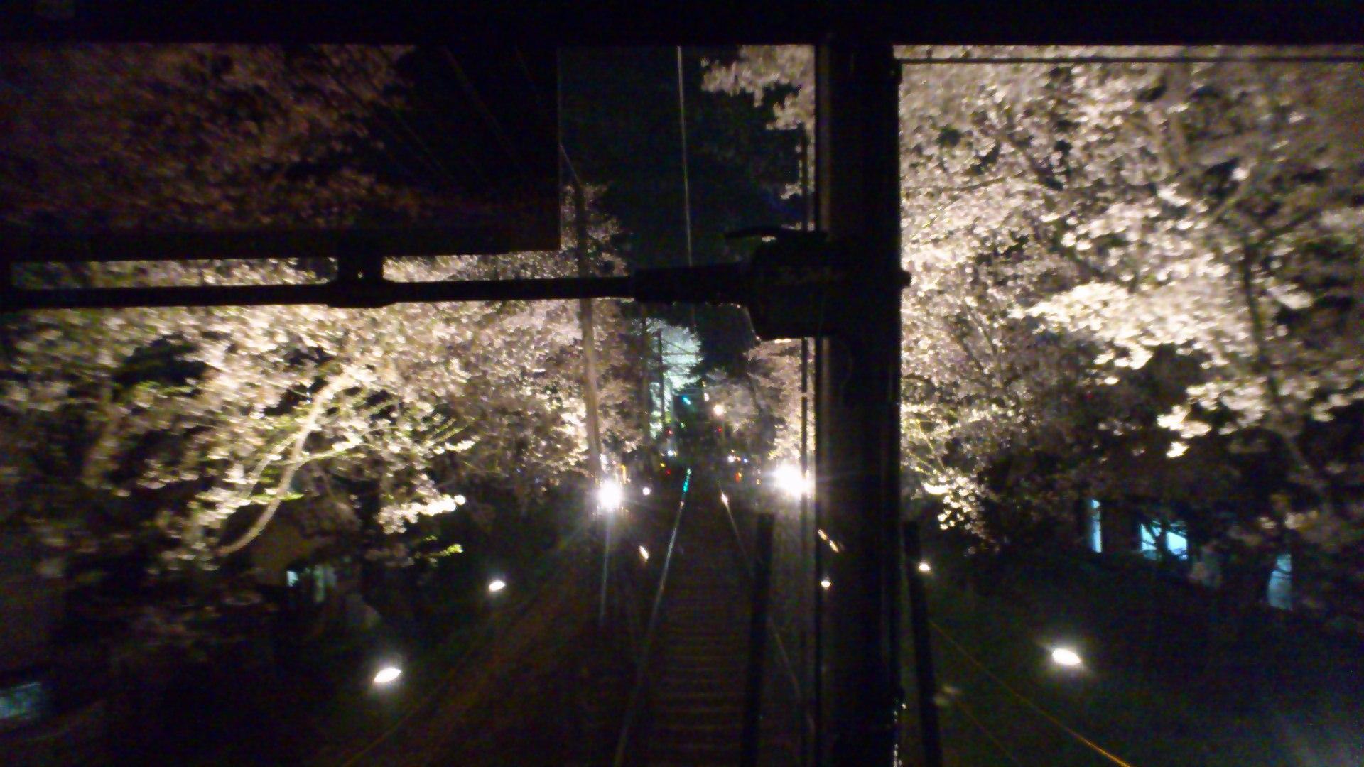 嵐電夜桜電車に乗ってみました