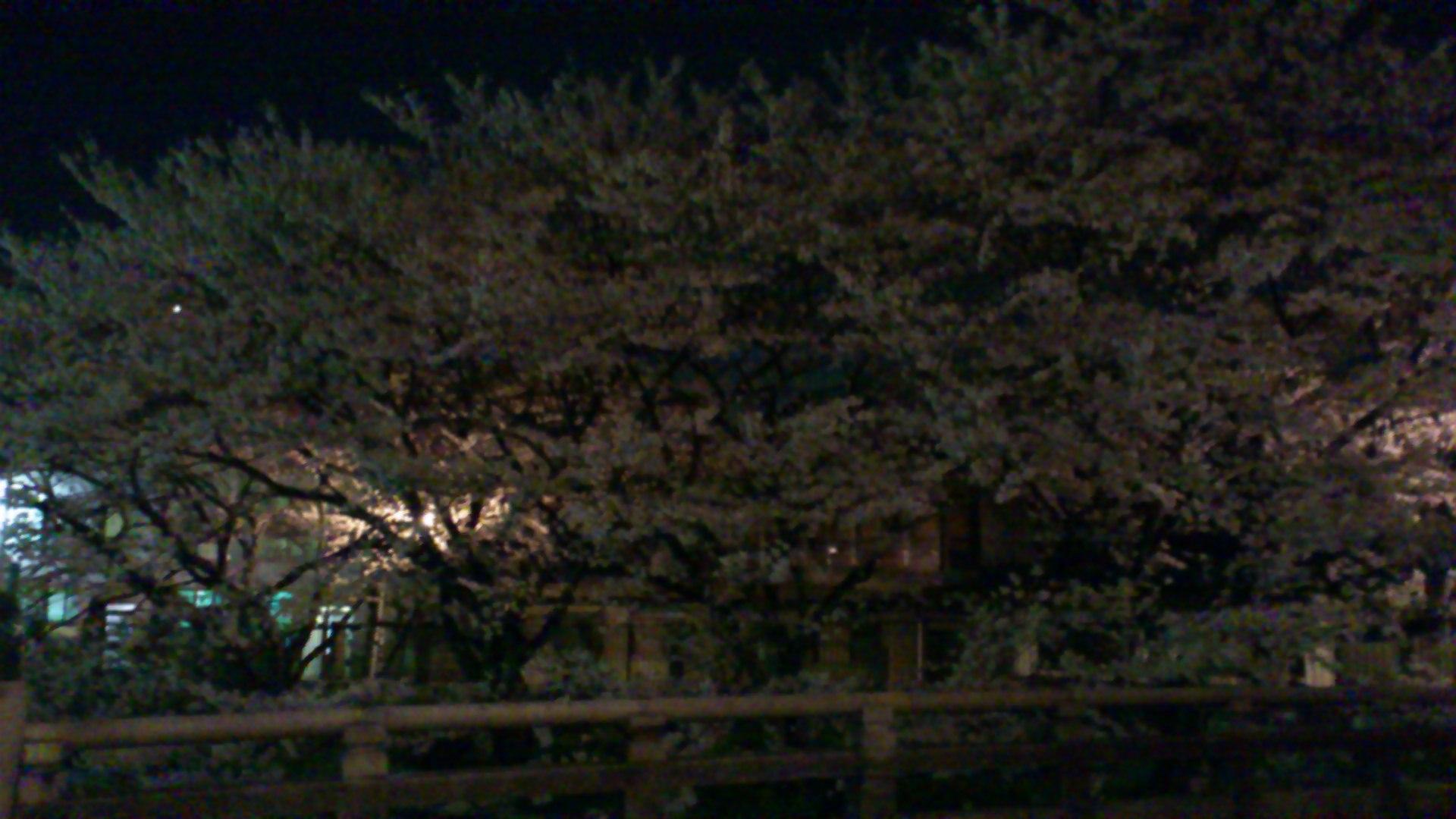 琵琶湖疎水取水口と三井寺はライトアップ自粛